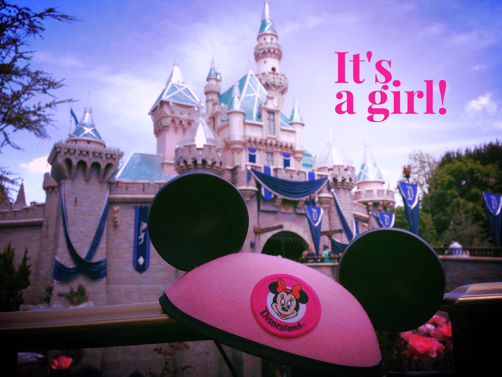 Walt Disney World Gender Reveal